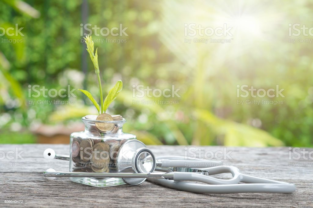 Stethoscope on bottle, coin and plant on wooden background. Conc stock photo