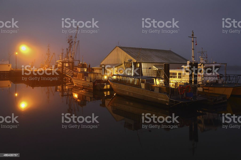 Steveston Night Dock Fog royalty-free stock photo