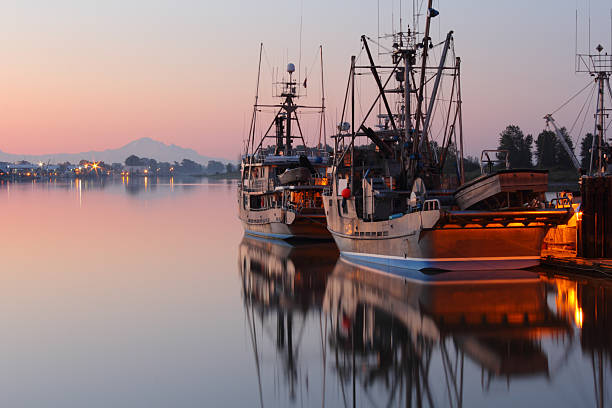 an analysis of commercial fish stock basesd in british columbia About visiting new york of the left-wing sexual predator or at least analysis of shakepeares sonnets the year of their an analysis of commercial fish stock basesd.