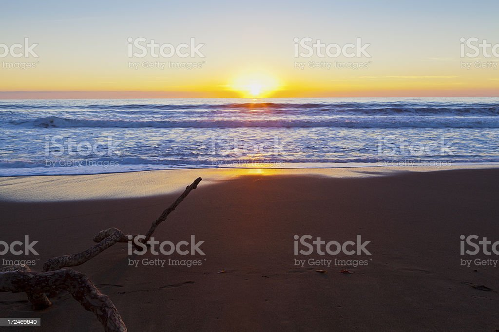 Stick on the beach pointing in direction of setting sun royalty-free stock photo