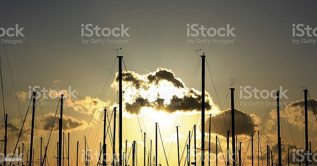 Sticks and Sunset royalty-free stock photo