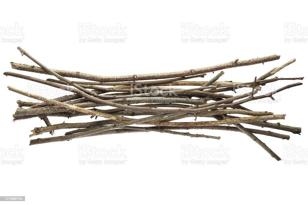 Sticks and twigs stock photo