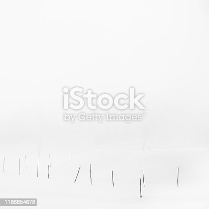 477312602istockphoto Sticks in a snow field on a foggy morning, Parma, Italy 1186854678