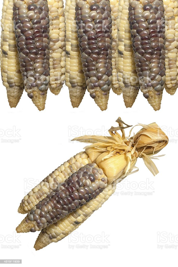 sticky corn royalty-free stock photo