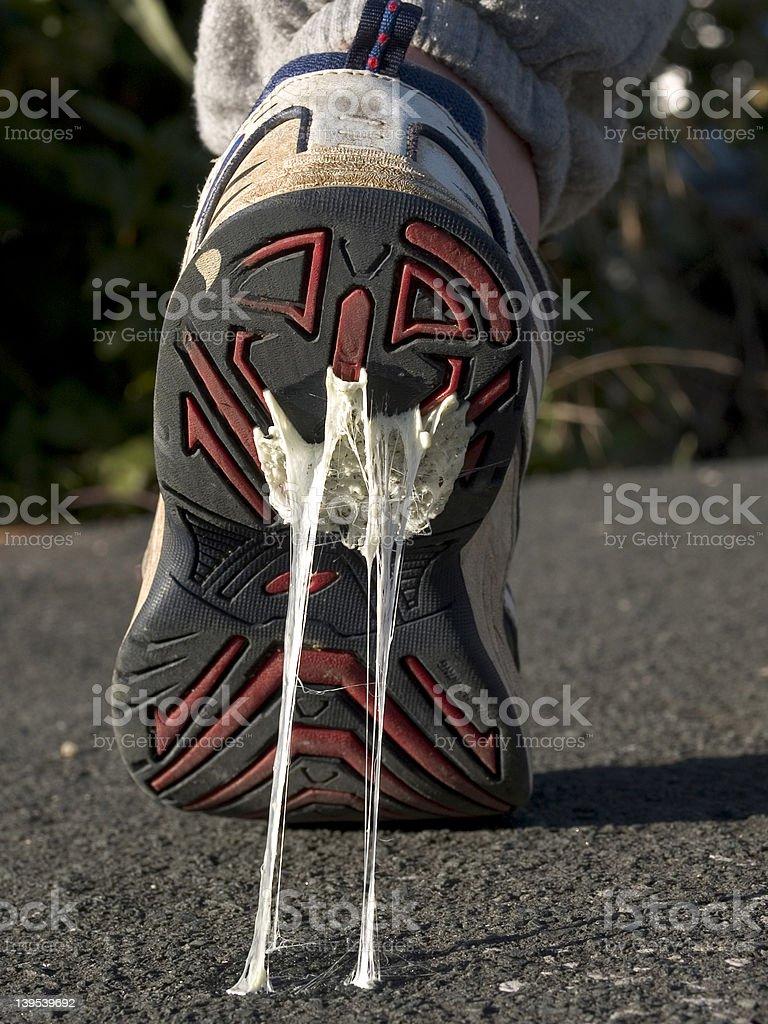 Sticky Feet royalty-free stock photo