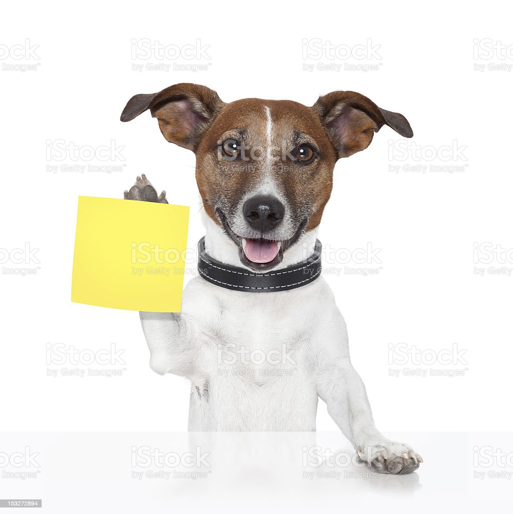 sticky note banner dog royalty-free stock photo