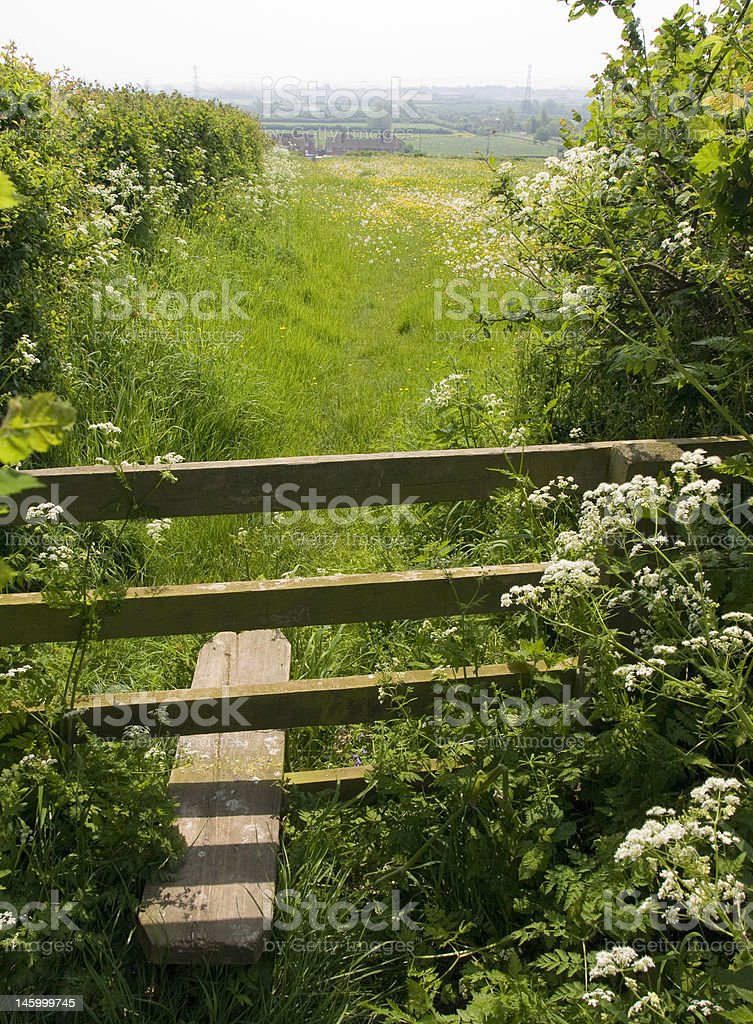 Stile by a Somerset meadow stock photo