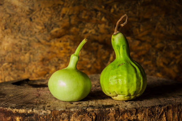 still life art photography with calabash - gourd stock photos and pictures