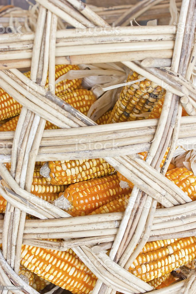Still life corns in bamboo container. stock photo