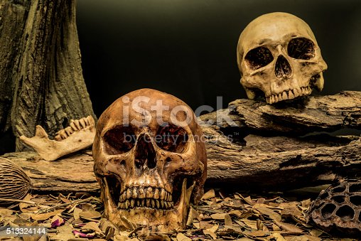 1176385551istockphoto still life couple human skull art abstract background 513324144