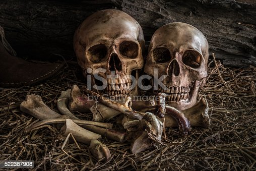 1176385551istockphoto still life couple human skull art abstract background 522387908