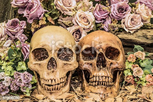 1176385551istockphoto still life couple human skull with roses 510635030