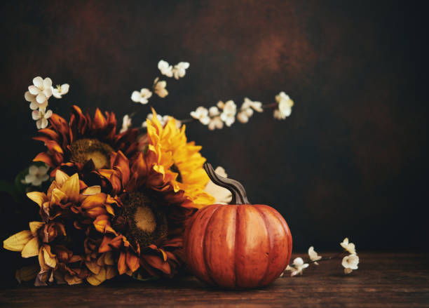 Still life fall Thanksgiving arrangement with sunflowers and pumpkin stock photo