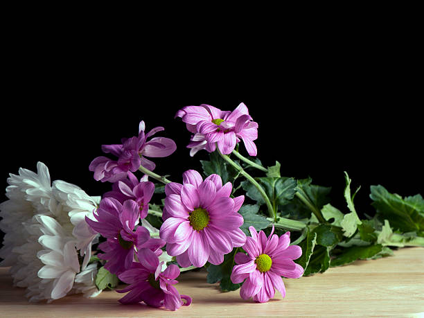 Still Life Flowers On Wood stock photo