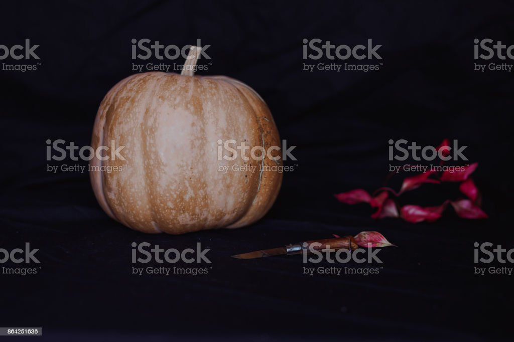 Still life. Halloween and thanksgiving background royalty-free stock photo