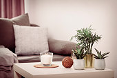 Still life home atmosphere in the interior with candle and home plants, home decor elements, the concept of comfort and coziness