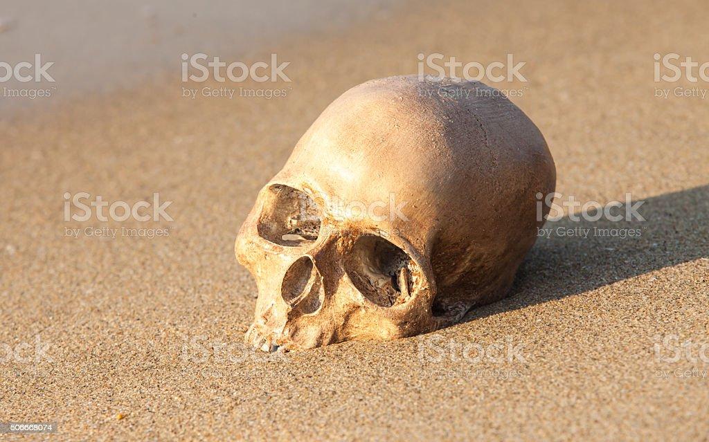 Stillleben, menschlicher Schädel auf dem Sand Strand – Foto