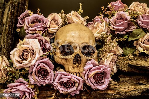 1176385551istockphoto still life human skull with roses background 510229220