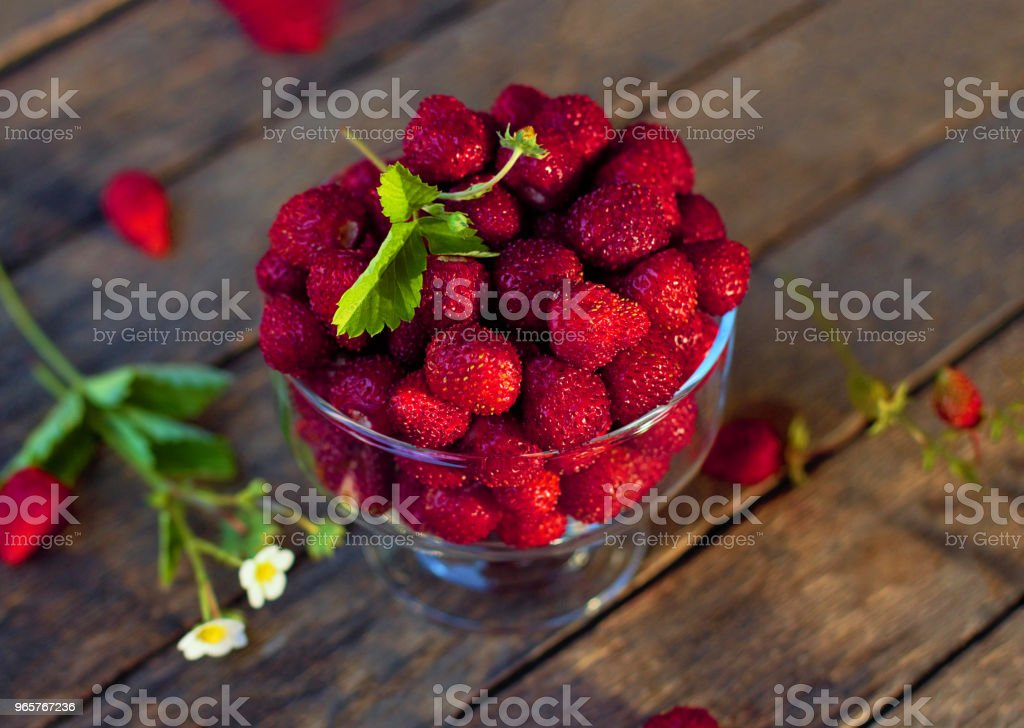 "Still life of fresh forest berries. Wild strawberry (Fragaria vesca Linnaeus) in English - ""Wild strawberry"" or ""Alpine strawberry"", in French - ""Fraise des bois"". - Стоковые фото Без людей роялти-фри"