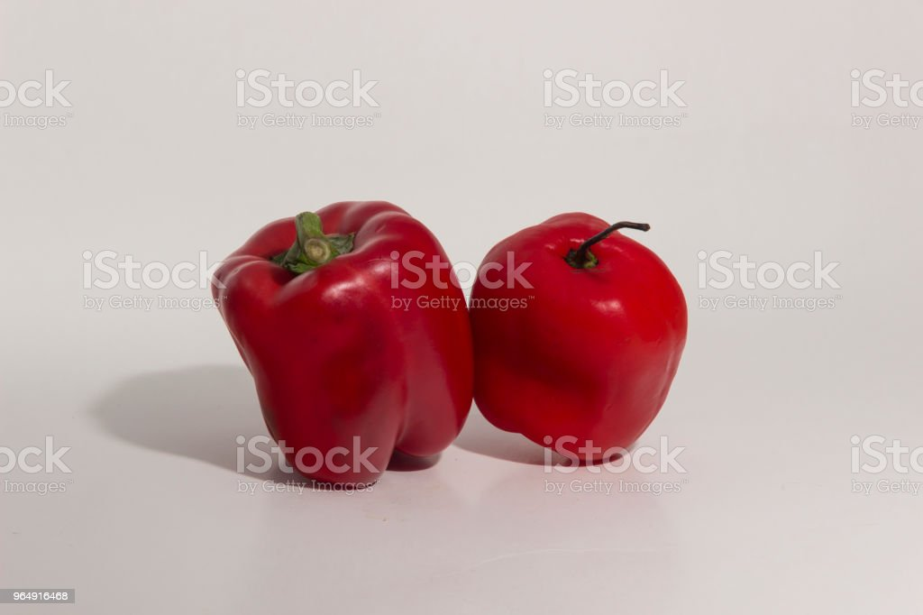 Still life of Peruvian chilies - comparative sizes royalty-free stock photo