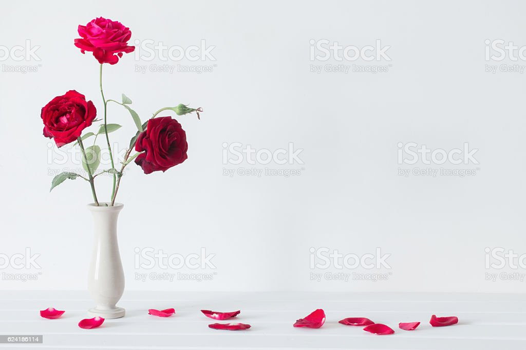 still life of red rose in vase stock photo