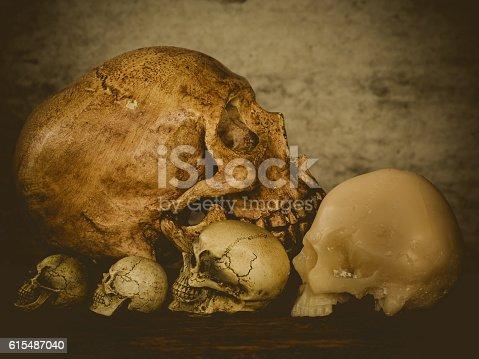 istock Still life of skull 615487040