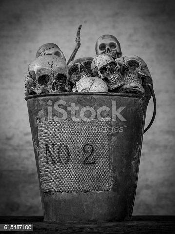 istock Still life of skull 615487100