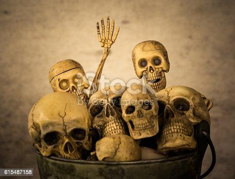 istock Still life of skull 615487158