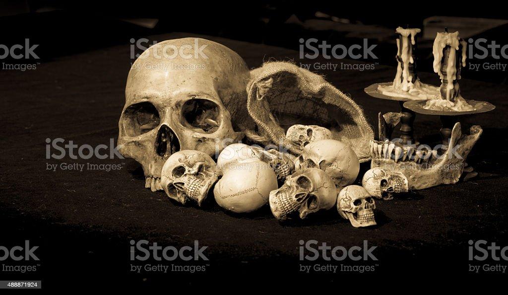 still life of skull with dark background stock photo
