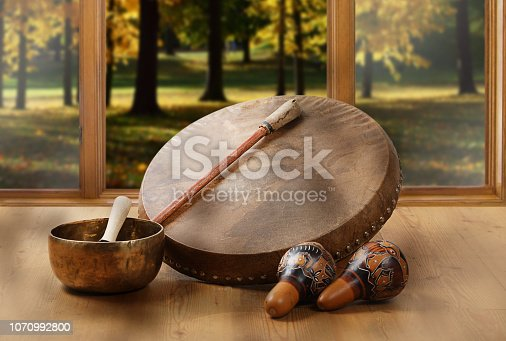 A still life of the shamanic drum, Tibetan singing bowls and maracas on a background of forest