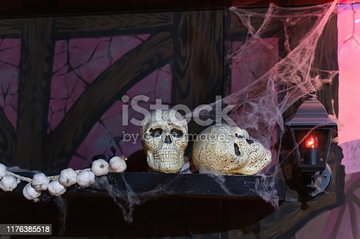1176385551istockphoto Still life of two skulls on a shelf with a bundle of garlic 1176385518