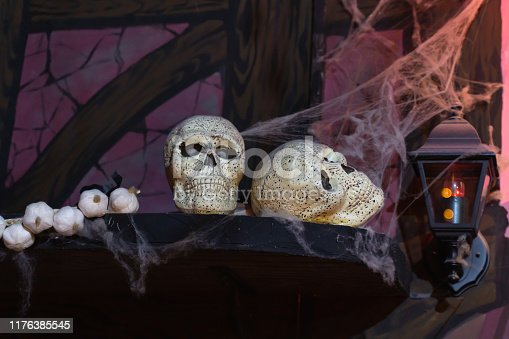 1176385551istockphoto Still life of two skulls on a shelf with a bundle of garlic 1176385545