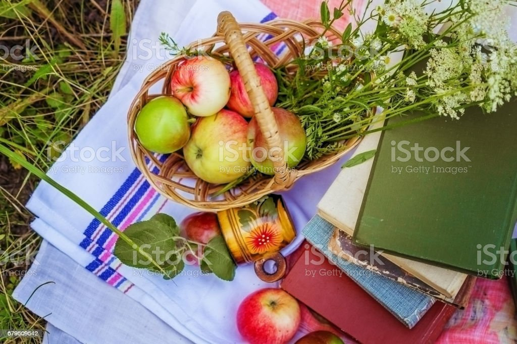 Still life on the grass in the summer. Apples and apricots in the basket on the tablecloth on the grass next to the old books. royalty-free stock photo
