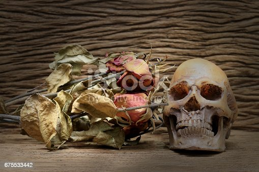 1176385551istockphoto Still life painting photography with human skull and dry roses 675533442