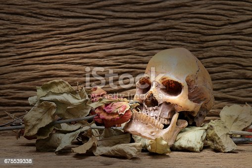 1176385551istockphoto Still life painting photography with human skull and dry roses 675539338