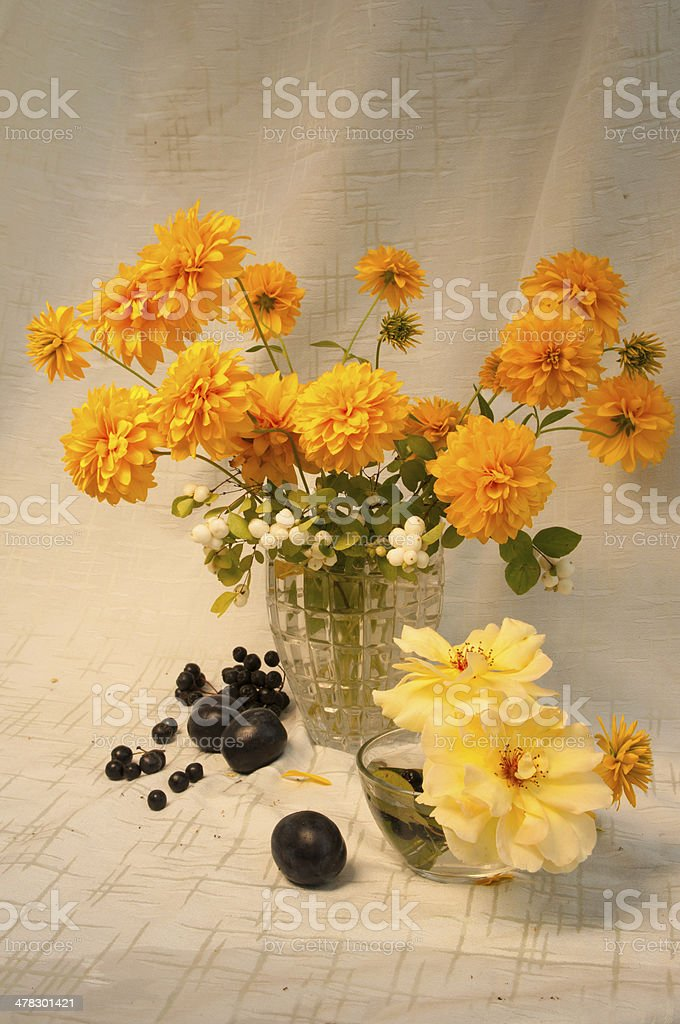 still life royalty-free stock photo