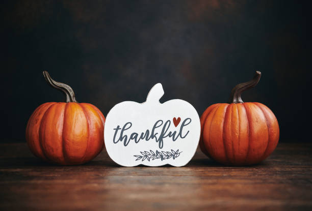 Still life Thanksgiving background with vibrant pumpkins and holiday message stock photo