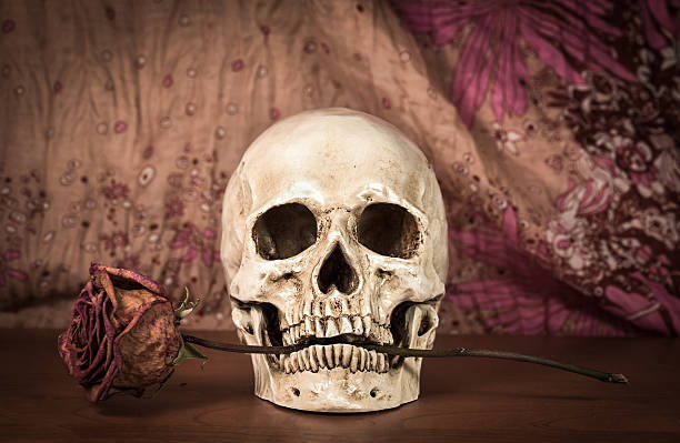 Skull With Jaw Dropped: Jaw Dropping Face Stock Photos, Pictures & Royalty-Free