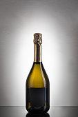 Still Life: Wine Bottles On Gray Gradient Background
