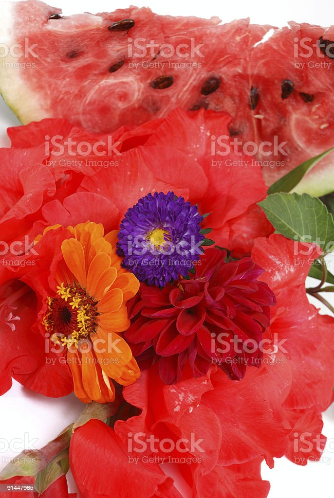 Still life with a watermelon royalty-free stock photo