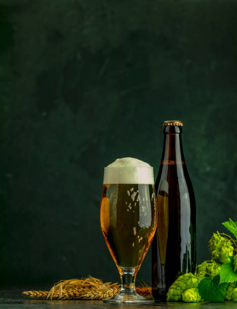 Still life with beer and hop plant in retro style. Glass of cold foamy beer brown bottle of beer and hop on a dark background stock photo