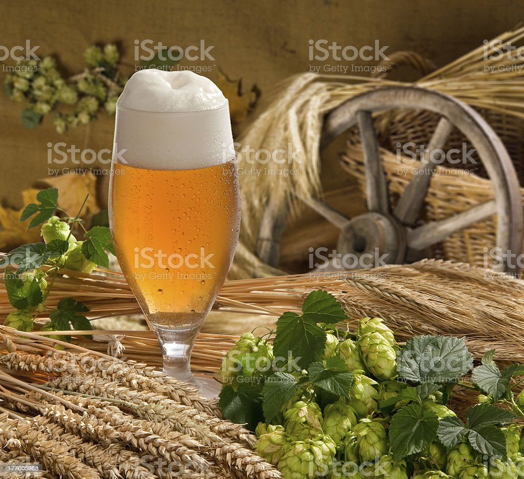 still life with beer royalty-free stock photo