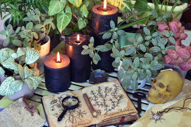 Still life with black candles, witch book with herbal drawings and skull. stock photo