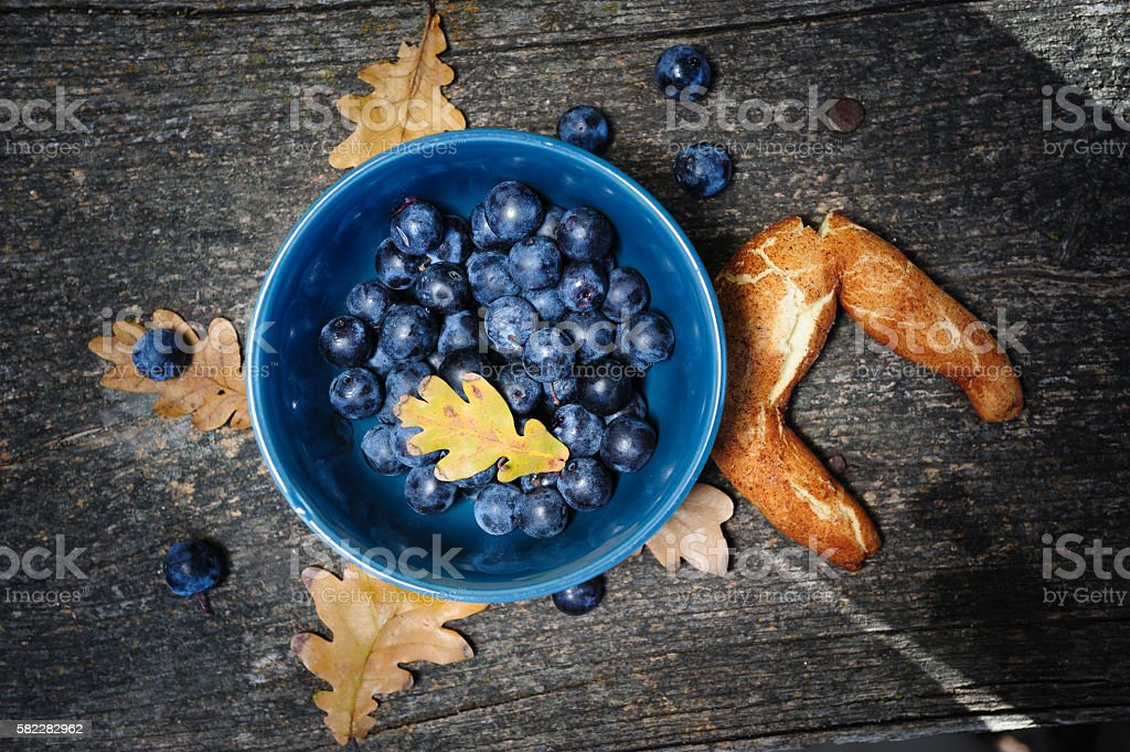 Still life with blackthorn and bagel stock photo