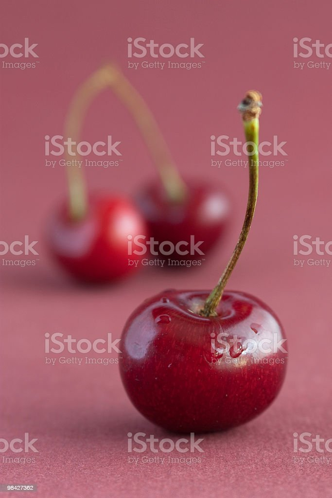 Still life with cherries royalty-free stock photo