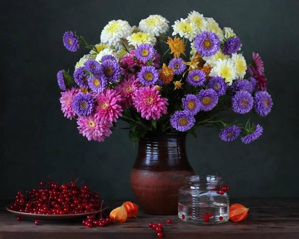 Stillleben mit Chrysanthemen und Astern. – Foto