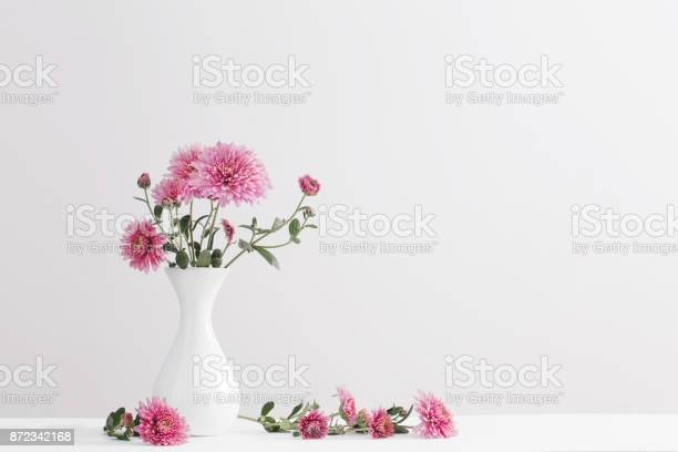Still life with chrysanthemums on white background picture id872342168?b=1&k=6&m=872342168&s=612x612&h=9uct5sqnvv8ngezo7lkpg1ij54awei6cmynzxirfpga=