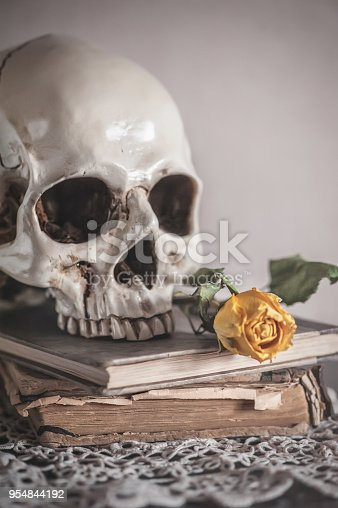 1176385551istockphoto Still life with dry roses and skull on old vintage book 954844192