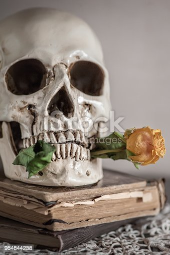 1176385551istockphoto Still life with dry roses and skull on vintage book and lace 954844238