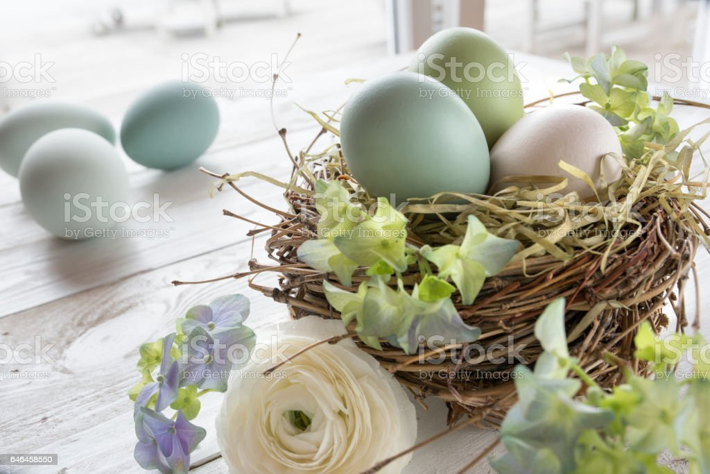 Still life with easter eggs in a nest and flowers stock photo